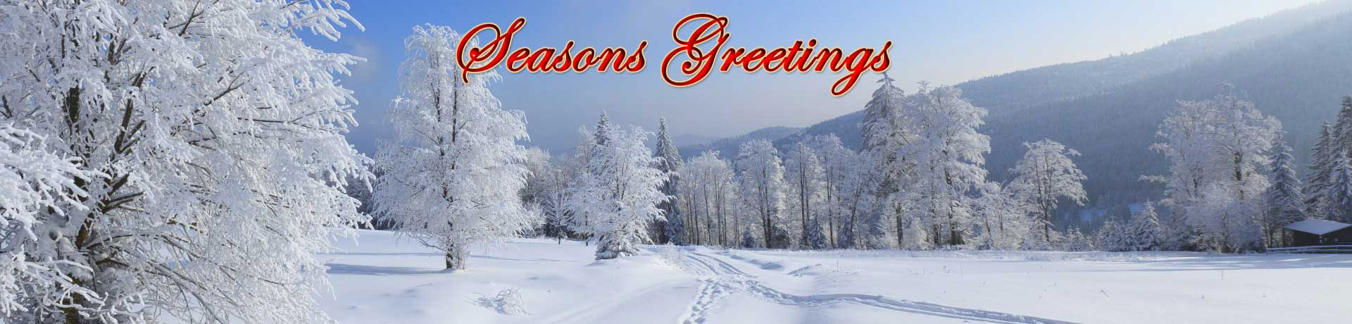 sg_snow_christmas_1